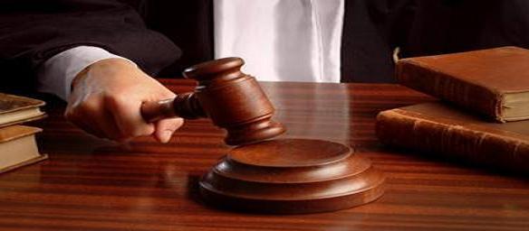 Decreto Legge approvato alla Camera: cosa prevede, commenti  e reazioni
