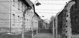 Barbagallo: Shoah è stata la più grande tragedia dell'umanità