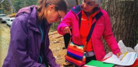 Maria Rita Gallozzi, dagli scout di Frosinone alle foreste tropicali africane